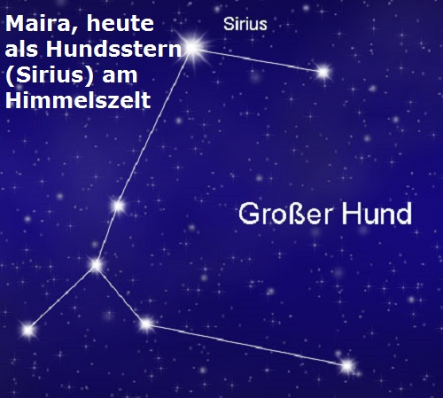 Maira (Hund, Mythologie): Heute als Hundsstern (Sirius) am Firmament Maira10