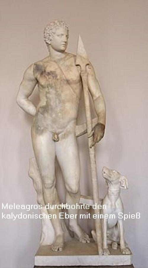 Meleagros (Mythologie): Sohn des Oineus, durchbohrte den kalydonischen Eber Meleag10