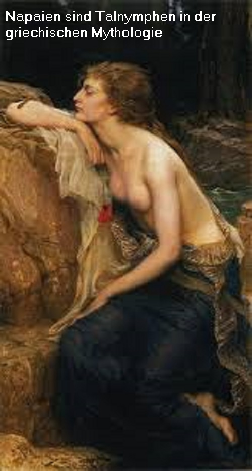 Napaien (Mythologie): Eine Napaie / Napaiai ist eine Talnymphe Napaie10