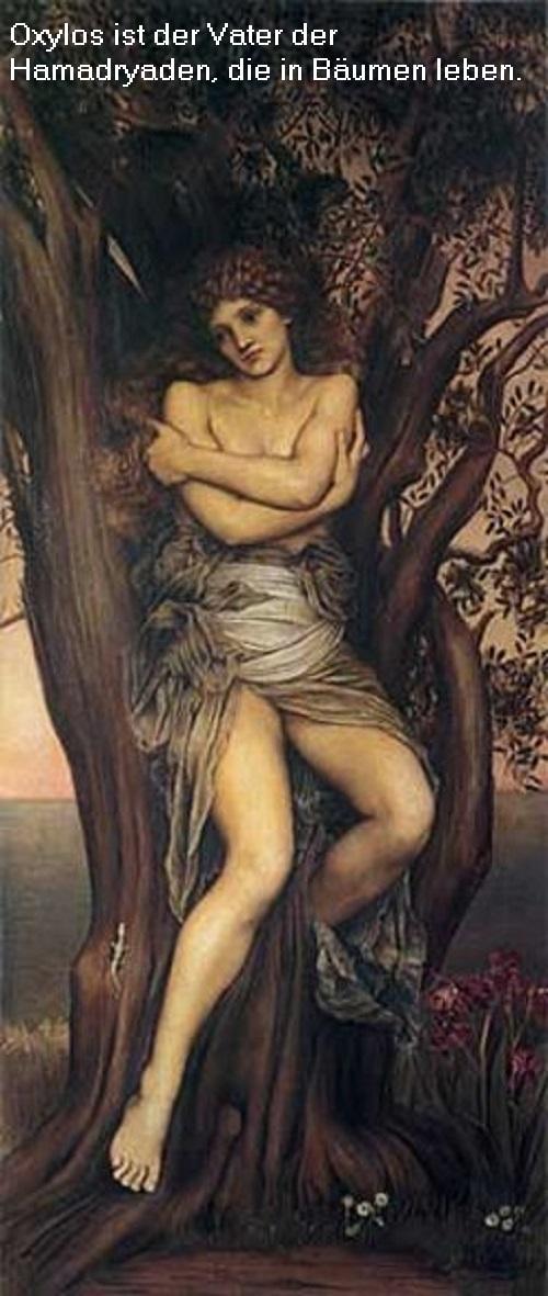 Oxylos (Mythologie): Vater der Hamadryaden Oxylos10