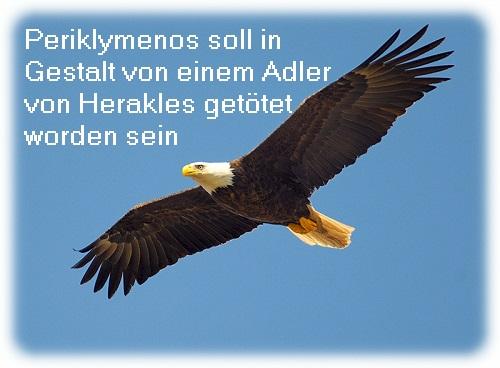 Periklymenos (Mythologie): Wurde in Gestalt von einem Adler von Herakles getötet Perikl10