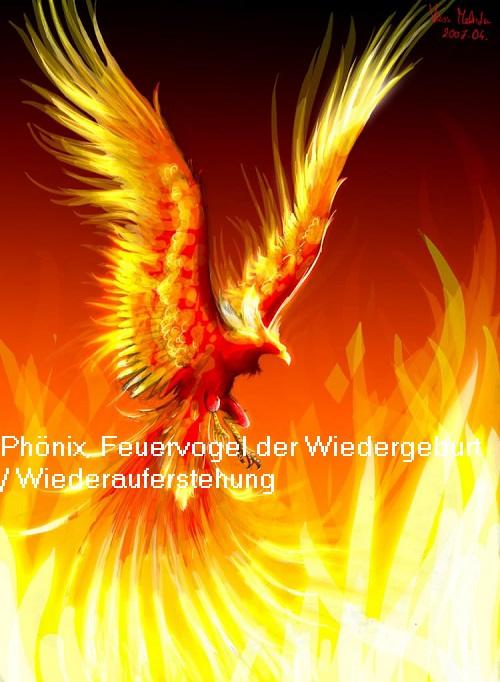 Phönix, Phoenix, Phoínix (Mythologie): Feuervogel der Wiederauferstehung / Wiedergeburt Phznix10