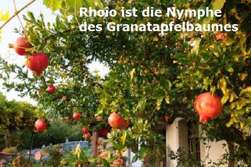 Rhoio (Mythologie): Nymphe des Granatapfelbaumes Rhoio10