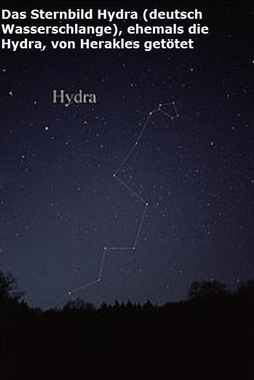 Hydra: Ein heimtückiges Ungeheuer mit einem unsterblichen Kopf Sternb12