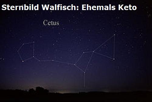 Meeresungeheuer Keto, zum Glück von Perseus getötet Walffi10