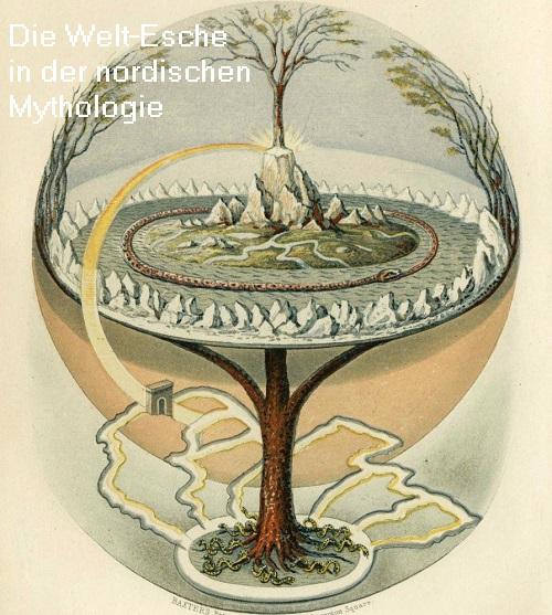 Meliaden (Mythologie): Eine Meliade ist eine Nymphe, die in einer Esche lebt und diese beschützt  Welt-e10