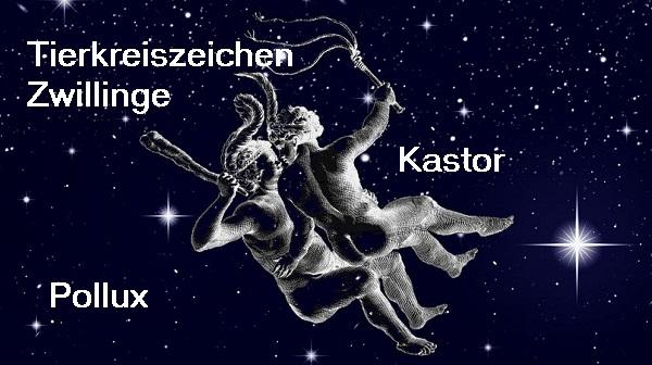 Pollux und Kastor (Mythologie): Söhne der Königin Leda, als Brüder am Firmament vereinigt, Tierkreiszeichen Zwillinge Zwilli10