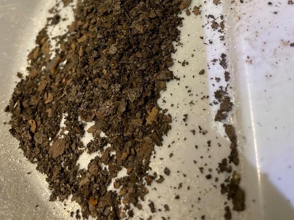 Operation Pretty Pussy: Restoring my '03 24,000 Miler Rust10