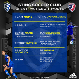 Sting SC 07G D1 Classic Keeper Opportunity! 2021_s11