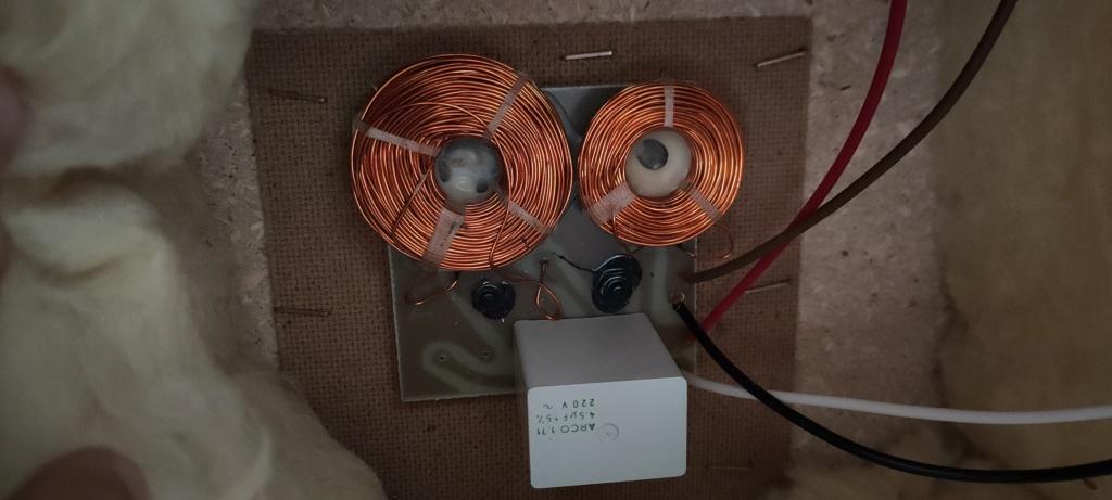 Riparazione diffusori ESB25L Img20210