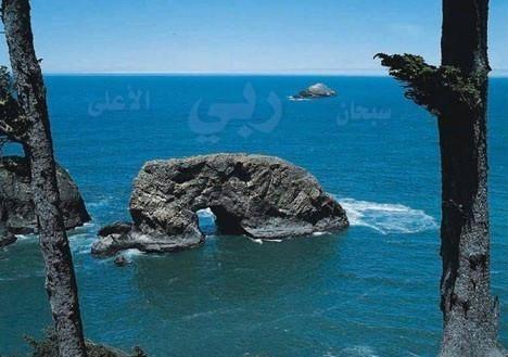 soubhanallah M-sob710