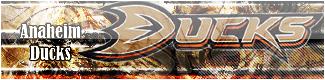 Ducks Anaheim
