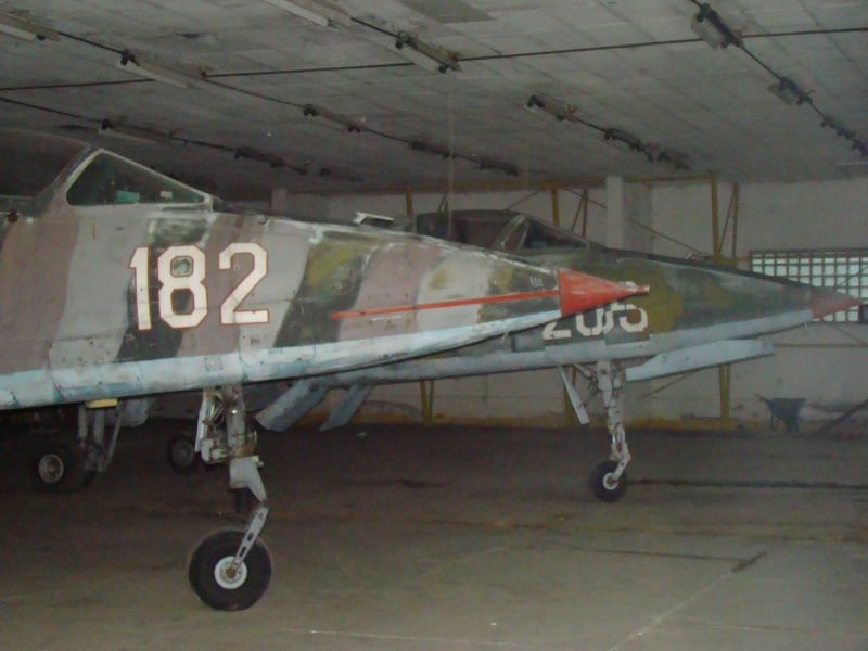 Aeronave militare - Pagina 3 Dsc04211