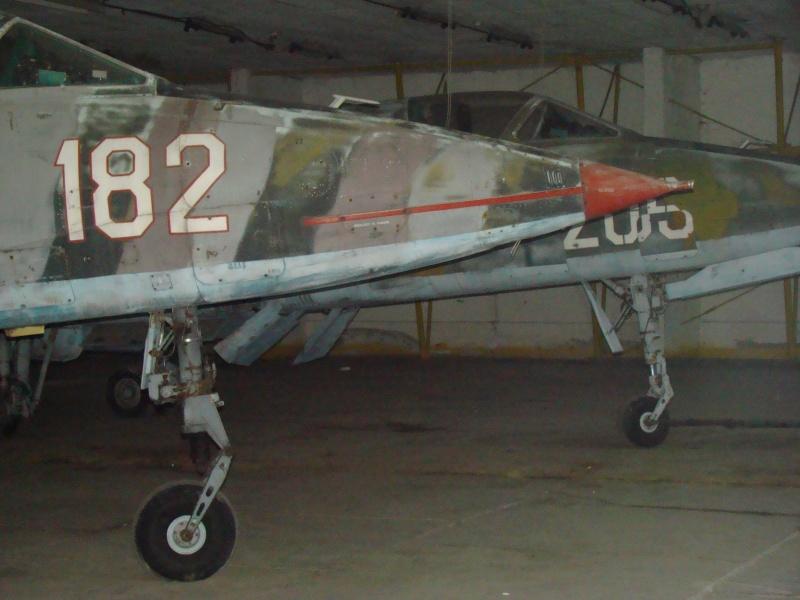 Aeronave militare - Pagina 3 Dsc04213