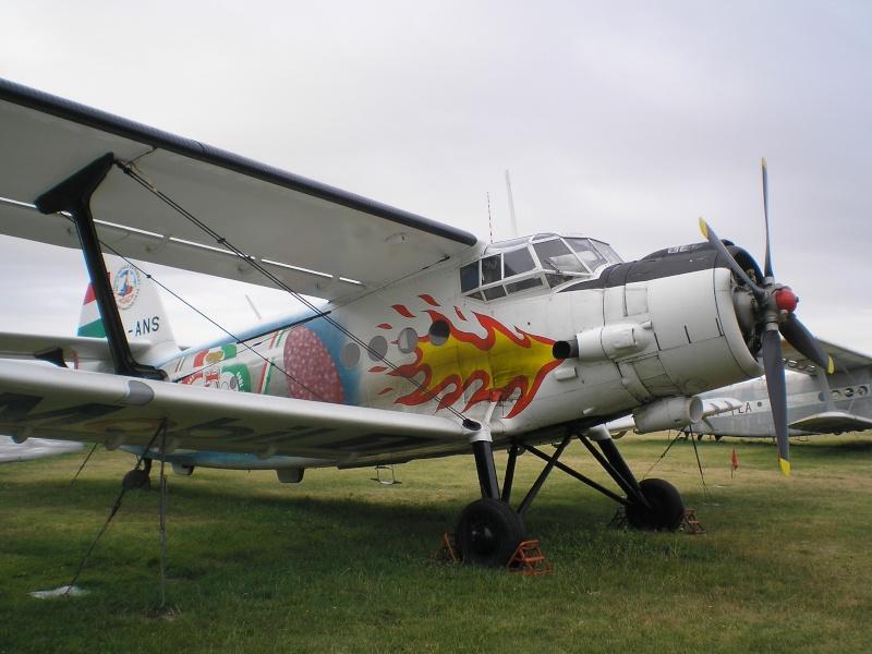 Avioane Straine in Culori Speciale P8121610