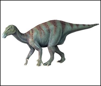 L'iguanodon Di_igu10
