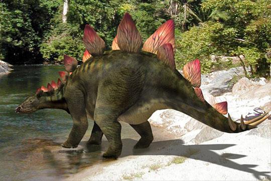 Le stégosaure Stegos10