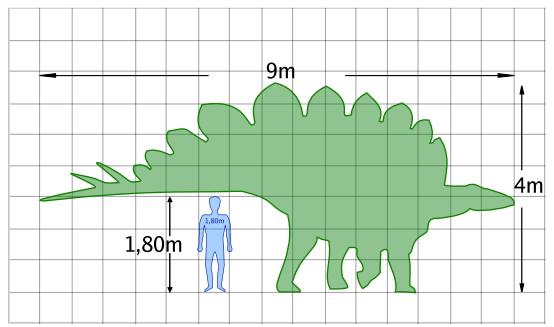 Le stégosaure Stegoz10