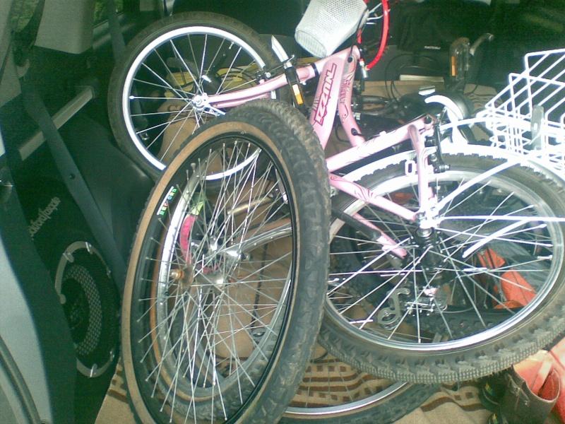 porta - Porta Bici: lo metto o no?! 07082010