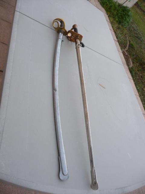 sabres!! P1170211