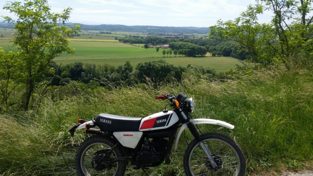 Fred de Haute Garonne 20200510