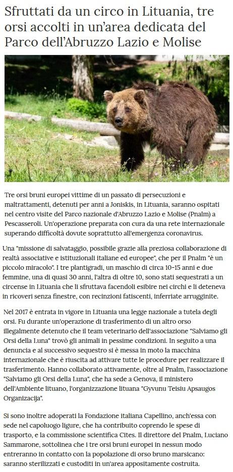 Notizie di animali....nel mondo - Pagina 4 3_orsi10