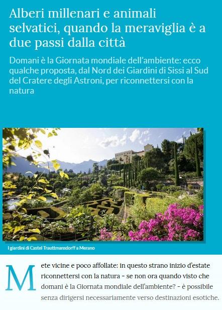 Le piante della salute Alberi10