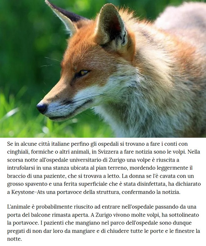 Animali... strani - Pagina 12 Anima168