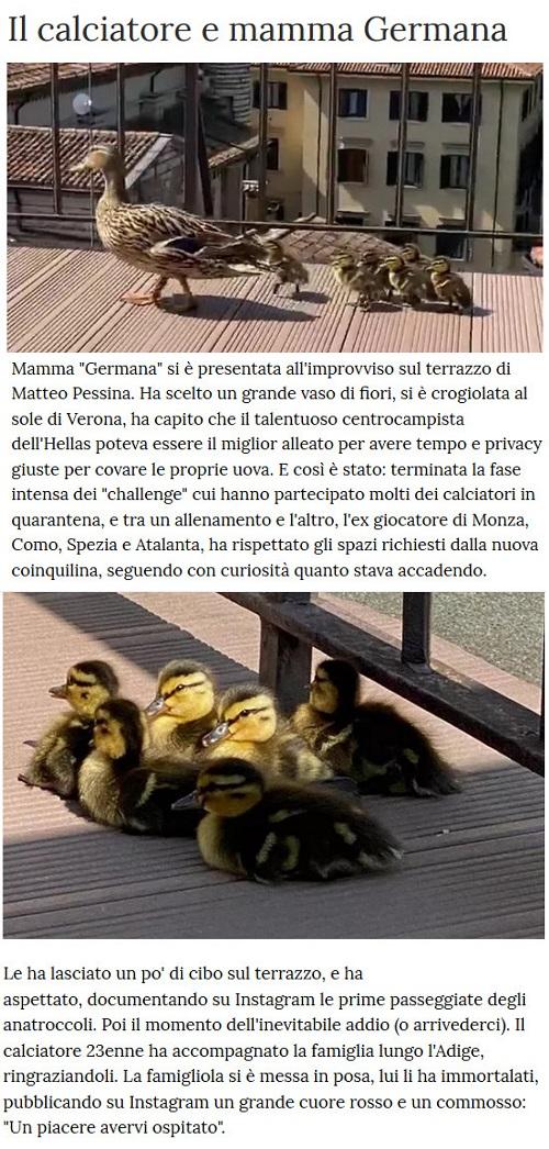 Notizie di animali....nel mondo - Pagina 2 Anima262
