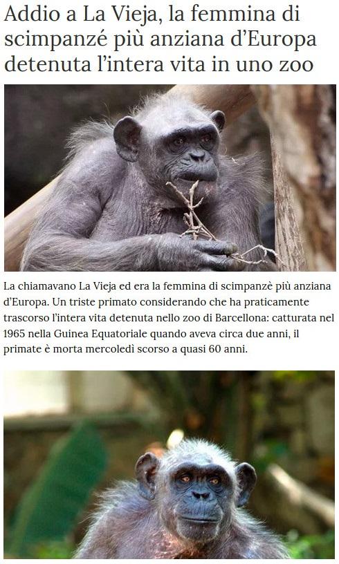 Notizie di animali....nel mondo - Pagina 2 Anima270
