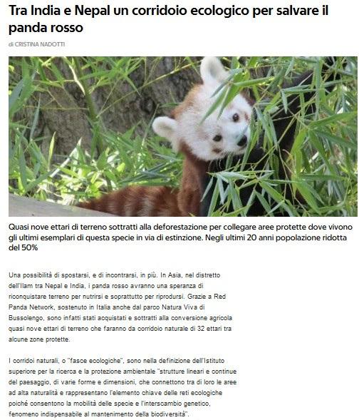 Notizie di animali....nel mondo - Pagina 3 Anima271