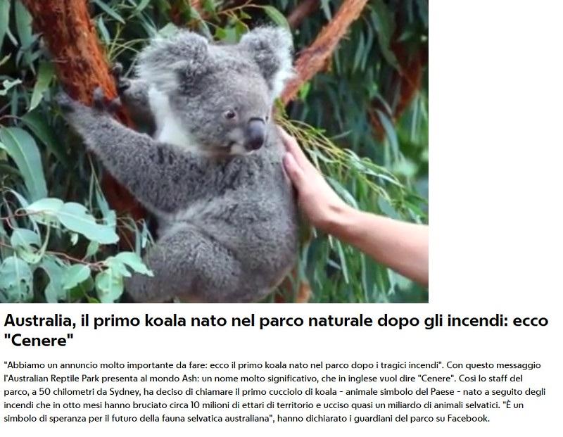 Notizie di animali....nel mondo - Pagina 3 Anima276