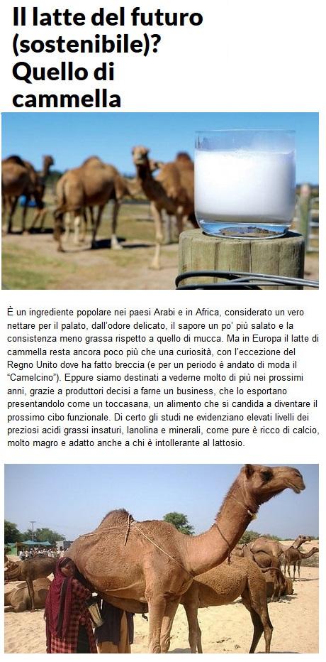 Notizie di animali....nel mondo - Pagina 3 Anima279