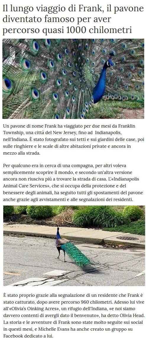 Notizie di animali....nel mondo - Pagina 3 Anima287