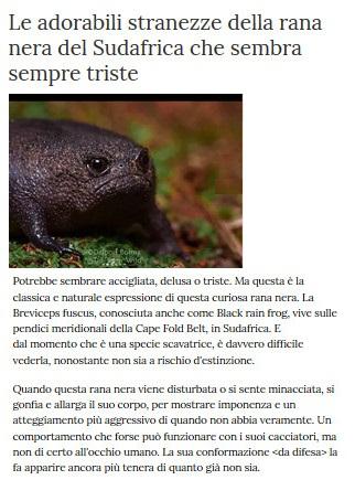 Notizie di animali....nel mondo - Pagina 3 Anima290