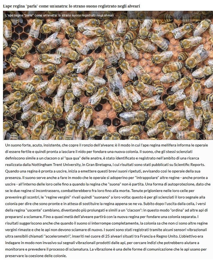 Notizie di animali....nel mondo - Pagina 4 Ape12
