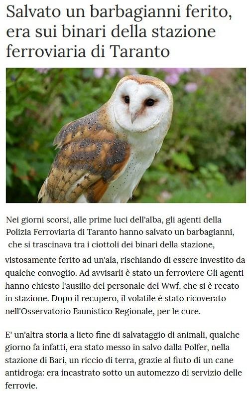 Notizie di animali....nel mondo - Pagina 4 Barba10
