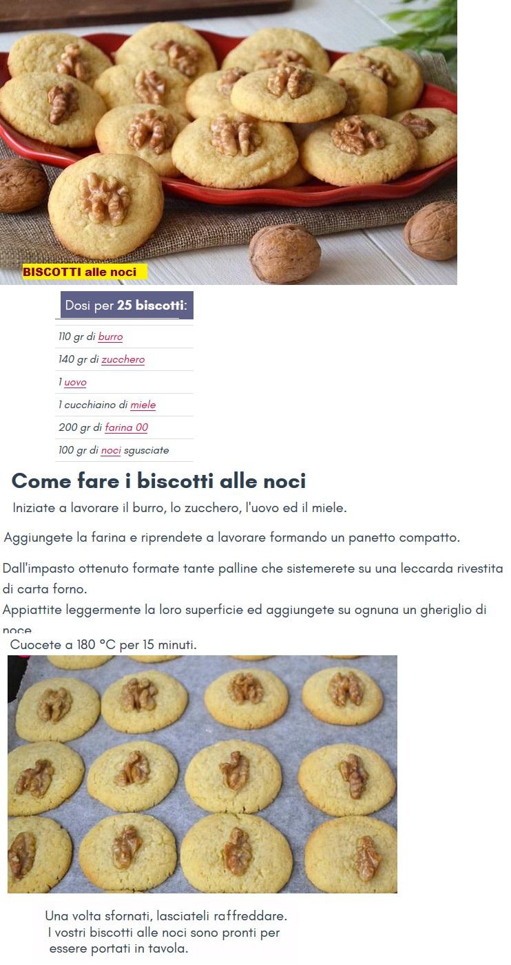 BISCOTTI Biscot17