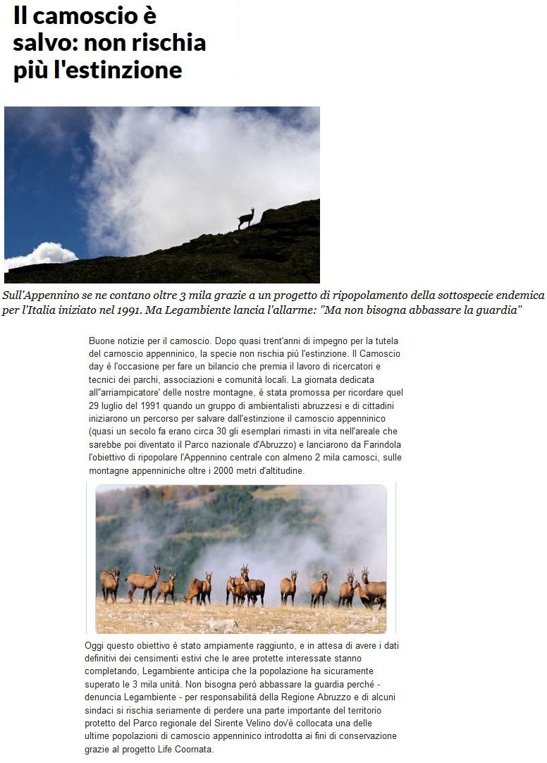 Notizie di animali....nel mondo - Pagina 5 Camosc10