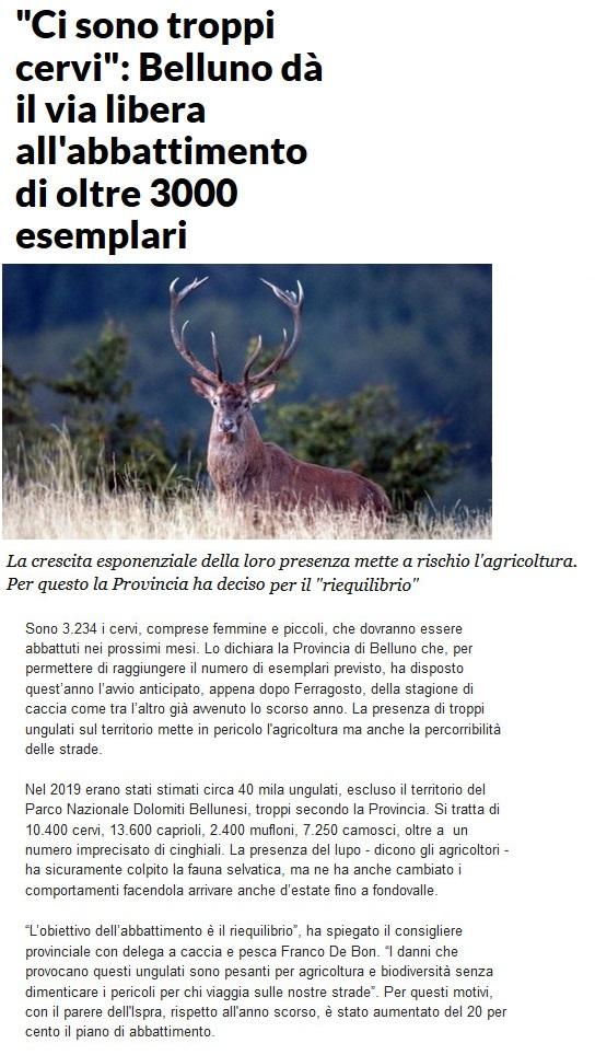 Notizie di animali....nel mondo - Pagina 5 Cervi10