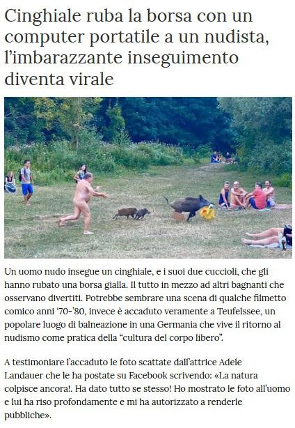Notizie di animali....nel mondo - Pagina 5 Cinghi11