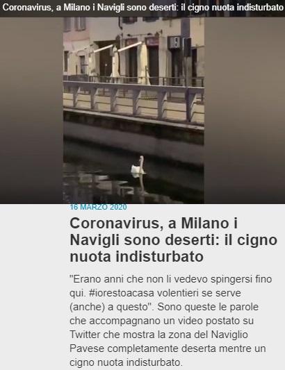 CORONA....VIRUS?? Corona28