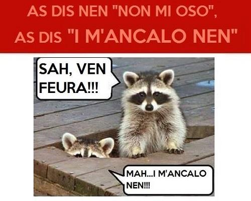 Parliamo in dialetto ?????  - Pagina 2 Dialet33