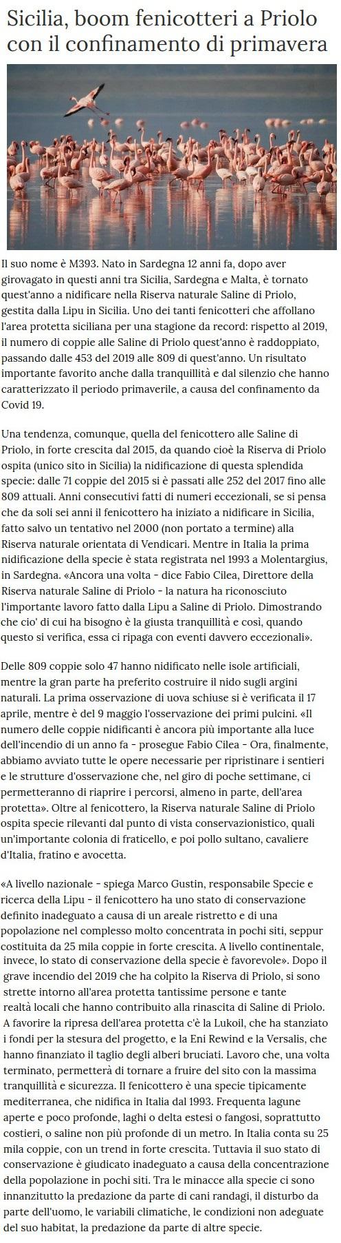 Notizie di animali....nel mondo - Pagina 5 Fenico10