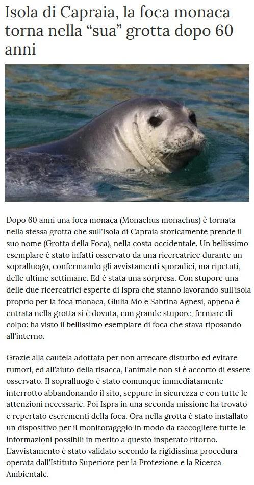 Notizie di animali....nel mondo - Pagina 4 Foca10