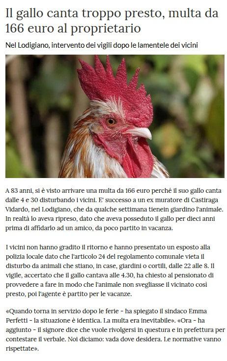 Notizie di animali....nel mondo - Pagina 5 Gallo10