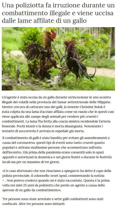 Notizie di animali....nel mondo - Pagina 8 Gallo11
