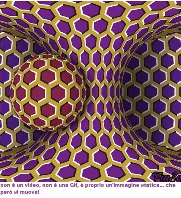 Illusione Ottica  ????? Gif10