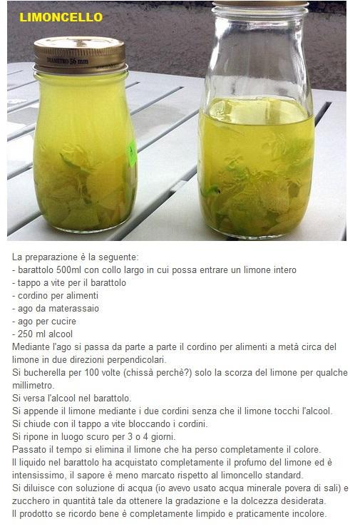 ricetta liquore alla menta.....ed altri Limonc10