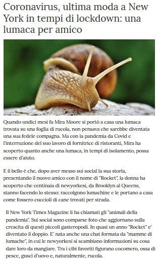 Notizie di animali....nel mondo - Pagina 7 Lumaca10
